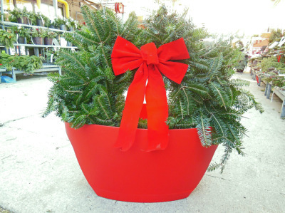 Awesome Recyclable Holiday Container Planters For A Balcony Garden   Annie Haven   Haven Brand   Scoop.it