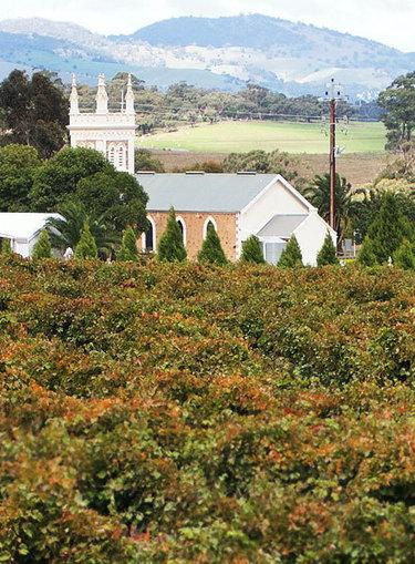 Torbreck Wines > Home | Wine General | Scoop.it