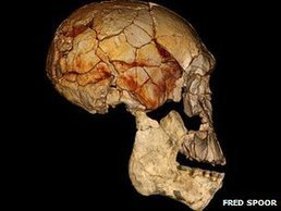 Scientists find new human species | A Sense of the Ridiculous | Scoop.it