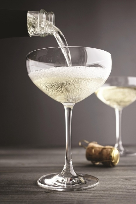 Cava producers must push diversity, says body president | Wine Industry News | Scoop.it
