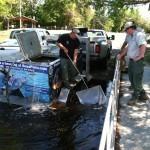 Florida Black Bass Management Plan—First Year Results - Florida Sportsman Magazine | Fish Habitat | Scoop.it