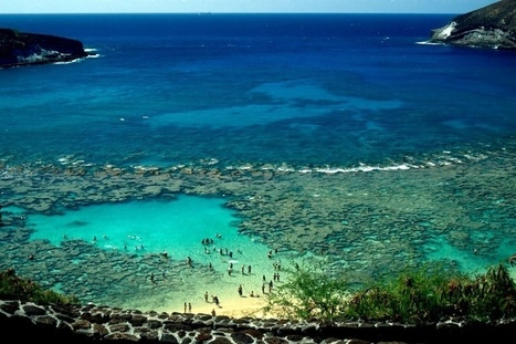 Have A Little Fun In The Honolulu Sun !! - Travel Planning - Quora | My Travel Wall | Scoop.it