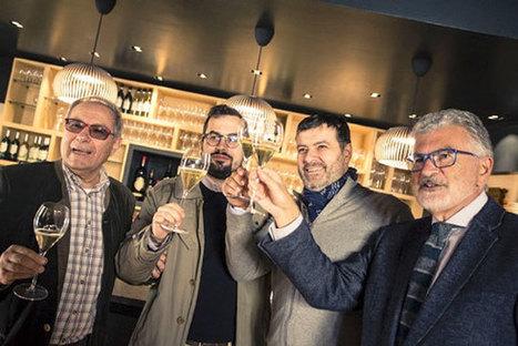 Tenuta Canova, Gardasee | Masi Wine Experience | Wine | Scoop.it