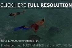 Dove fare Snorkeling in Italia | Come Quando | Immersioni sub in Italia | Scoop.it