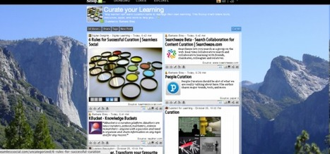 Curation as a 21st Century Skill | Barbara Bray - Rethinking Learning | 21st Century Teaching & Learning | Scoop.it