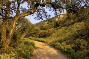Provence | Balades, randonnées, activités de pleine nature | Scoop.it