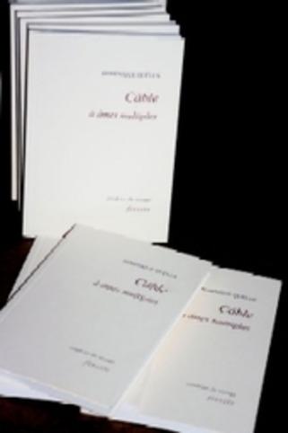 Câble à âmes multiples de Dominique Quélen | Poezibao | Scoop.it