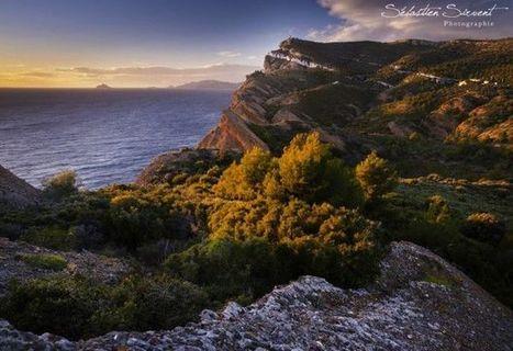 Photos | Séjours nature dans le Sud de la France: Garrigue et Calanques | Scoop.it