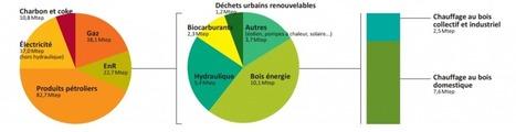 La biomasse : énergie originelle et énergie d'avenir - Energystream | Casa ecológica, casa eficiente, casa bioclimática | Scoop.it