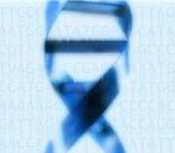 Haploinsufficiency of chromatin modifier gene KANSL1 sufficient to cause 17q21.31 microdeletion syndrome | Amazing Science | Scoop.it