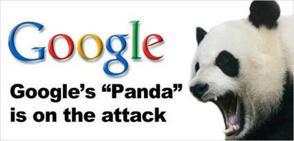 New Google Panda 26 Update Official Confirmed!   Metatataggsolutions-blog   Scoop.it