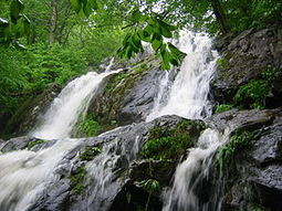 Waterfall of blessings | Yes Campaign 2014 | Scoop.it