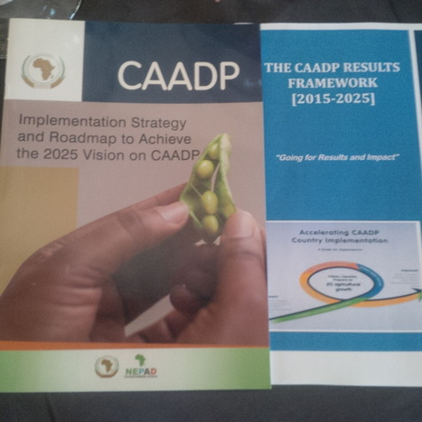 Regional Integration - the Big Picture for CAADP   NEPAD CAADP: Agriculture, Food Security and Nutrition in Africa   Scoop.it