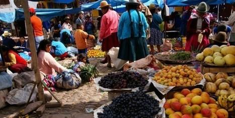 Las claves de la gastronomía peruana - gastronomia.com | Red Restauranteros - Noticias | Scoop.it