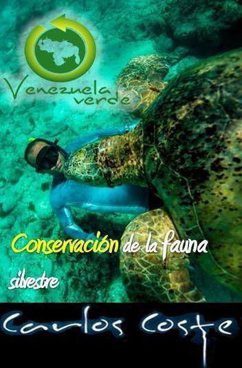 Venezuela Verde | página web ambiental venezolana | Agua | Scoop.it