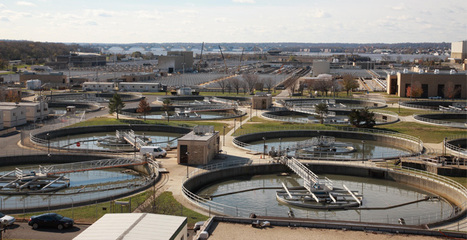 For WWTP Plant Engineers - Want to meet stringent Pollution control norms? | Effective Biological treatment | Scoop.it