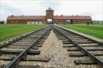 The Holocaust | holokaust | Scoop.it