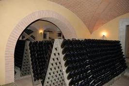 Le vin, refuge contre la crise économique - Viti-net.com   mode fashion tendance   Scoop.it