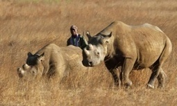 Texas man who won hunting auction to be allowed to import black rhino trophy | GarryRogers NatCon News | Scoop.it