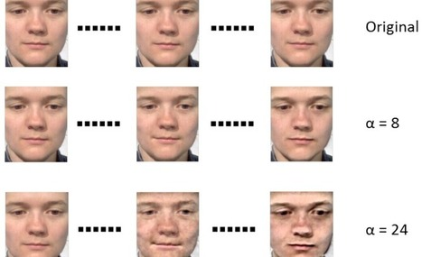 Beware, poker face: Automatic system spots micro-expressions | MindBrainBody | Scoop.it