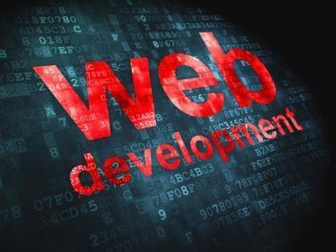 Why you shouldn't only Reply Web Development Agency ? | Website Development| E-Commerce | web design | SEO Services | TRIDINDIA IT Solutions | Scoop.it