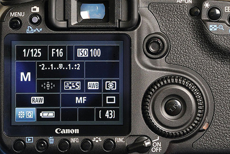 Best camera settings for macro photography | All Things Photography | Scoop.it