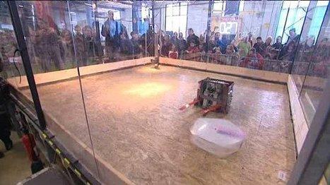 Des robots de combat s'affrontent à Mulhouse - France 3 Alsace   Robotique & Intelligence artificielle   Scoop.it