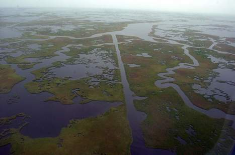 Louisiana seeks $68M for coastal restoration - Shreveport Times | Fish Habitat | Scoop.it