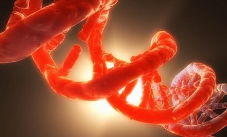 We could soon design and 'print' alien cells on Earth | Seguridad robotica | Scoop.it