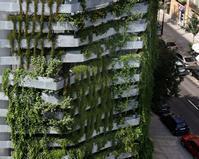 Un mur végétal original à Barcelone | Horticulture Education | Scoop.it