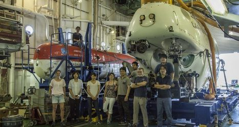 Measuring Respiration of Deep Sea Snails - Ocean Optics | Ifremer | Scoop.it