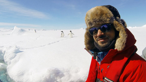 Antarctica Live: iceberg ahead! - video | English | Scoop.it