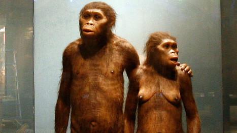 Hallan un cromosoma de hombre moderno en el ADN de un neandertal  - RT | Ciencias | Scoop.it