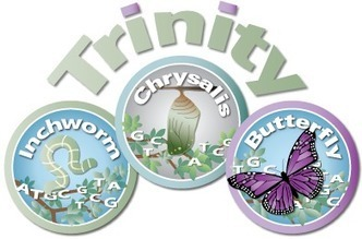 RNA-Seq De novo Assembly Using Trinity | 'omics | Scoop.it