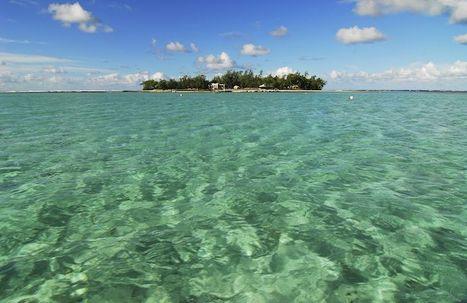 Mauritius: Africa's top property investment spot. @investorseurope #blockchain | The Blockchain Revolution | Scoop.it