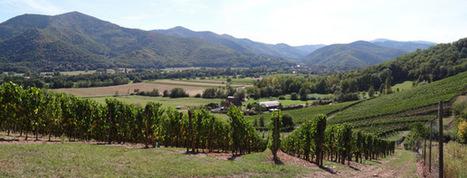 Atlas des paysages d'Alsace - Le champ | Agronomie sur le web | Scoop.it
