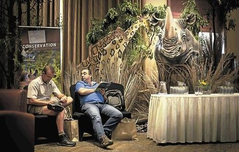 Rhino sale a secret affair - 313 lost to-date -... | My Funny Africa.. Bushwhacker anecdotes | Scoop.it