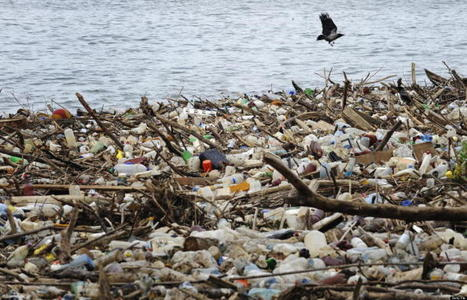 Great Lakes Face Alarming New Environmental Crisis | In Deep Water | Scoop.it