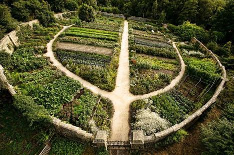 Permaculture: The New Paradigm Of Self Sufficient Community Based Living | Permaculture Design | Scoop.it