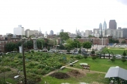 New Study Finds Green Space Linked to Reduced CrimeRates | School Gardening Resources | Scoop.it