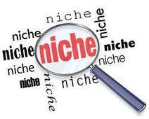 What is Niche Marketing? | Stephanie Deneke | Home Business,Passive Income, Internet Marketing, Online Business | Scoop.it