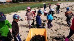 Los niños de O Areal aplican el poder fertilizante de las algas en su ... - La Voz de Galicia | Horticultura | Scoop.it