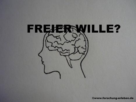 Freier Wille = freie Entscheidung? | Weiterbildung | Scoop.it