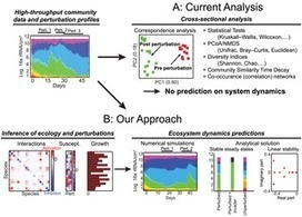 PLOS Computational Biology: Ecological Modeling from Time-Series Inference: Insight into Dynamics and Stability of Intestinal Microbiota | Systems biology and bioinformatics | Scoop.it