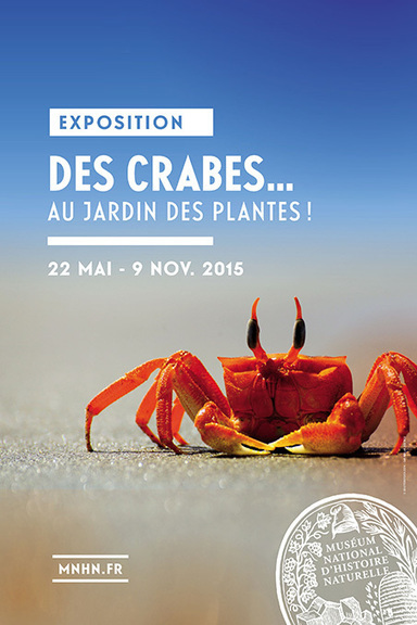 Des crabes au Jardin des Plantes / France Inter | La valise en papier | Scoop.it