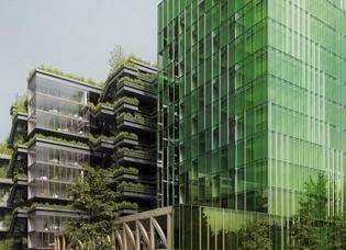 Bientôt des algues sur les façades des bâtiments ? | Valorisation des algues | Scoop.it
