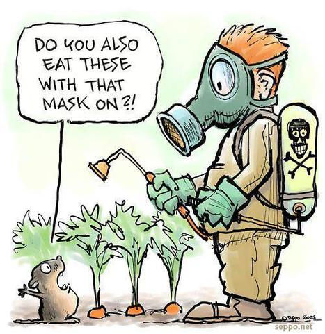 "#GMO Scientist Blows Whistle on #Monsanto's ""Misleading Studies"" Used to Cover Up Product Risks 