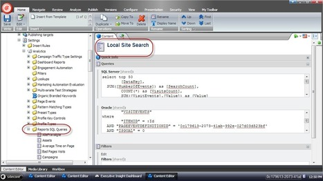Register local search terms in Sitecore DMS   Sitecore   Scoop.it