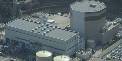 Une fuite radioactive décelée à la centrale de Tsuruga au Japon   LeMonde.fr   Japon : séisme, tsunami & conséquences   Scoop.it