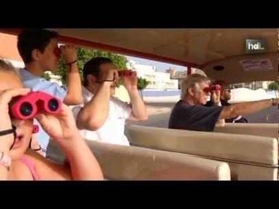 Una cooperativa turística de Roquetas de Mar patenta el primer autobús solar de España   Cooperativismo, Economía Social y Desarrollo Local   Scoop.it